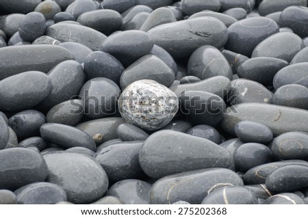 Beach wet pebbles background - stock photo