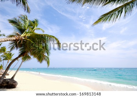 Beach with palm and white sand with the coast in the background. Dominican Republic.