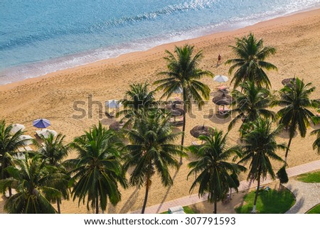 Beach with palm trees and umbrellas on top. Vietnam, Nha Trang