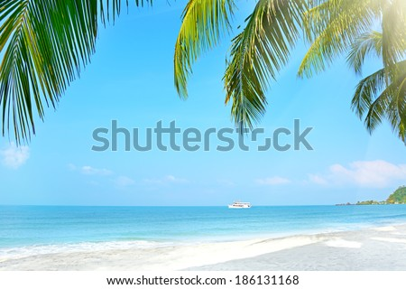 Beach with palm trees. Klong Prao, Koh Chang, Thailand - stock photo