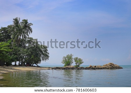 beach with stones and green trees