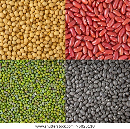 Beans collection as the background