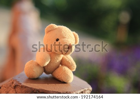 Bear doll in blurred background - stock photo