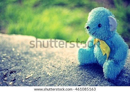 bear doll on nature background