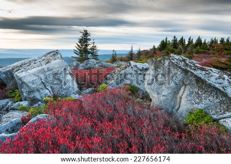 Bear Rocks Preserve Dolly Sods Wilderness Area West Virginia Autumn Landscape - stock photo