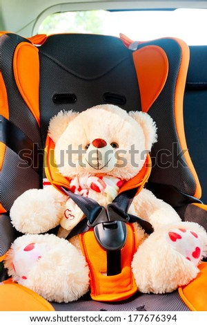 bear strapped in a child seat in the car