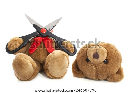 Bear whit his head cut off isolated over white - stock photo