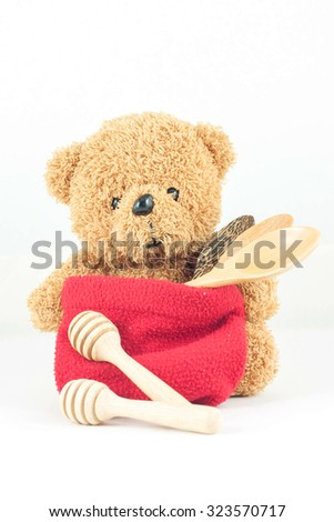 Bear with a bag for storage on white background.