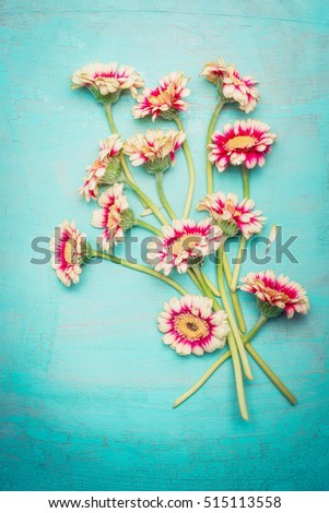 beauteous pink flowers bunch on shabby chic blue turquoise background top view greeting card beauteous pink blue