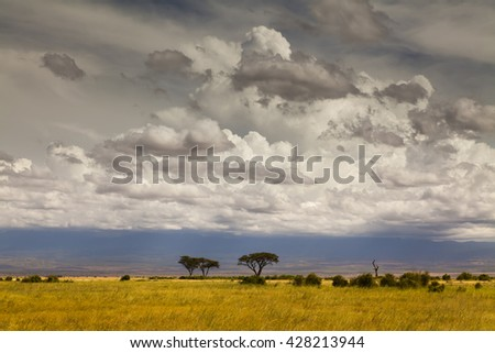Beautiful African landscape in the background of the cloudy sky. Kenya. Africa. - stock photo