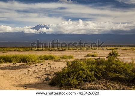 Beautiful African landscape on the background of Kilimanjaro. Kenya. Africa. - stock photo