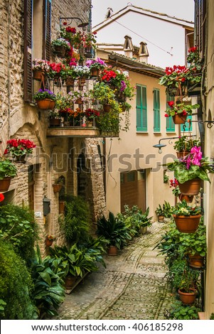 Beautiful alley decoration with plants and flowers in medieval town Spello - stock photo