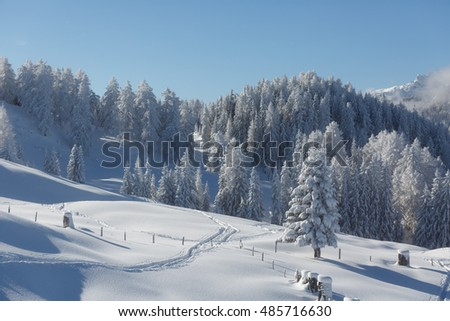 Beautiful alpine winter scenery