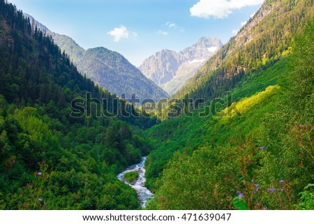 Beautiful amazing day summer in mountains. Northern country Russia Caucasus wilderness. Inspiring leisure. Green pine forest. River water.