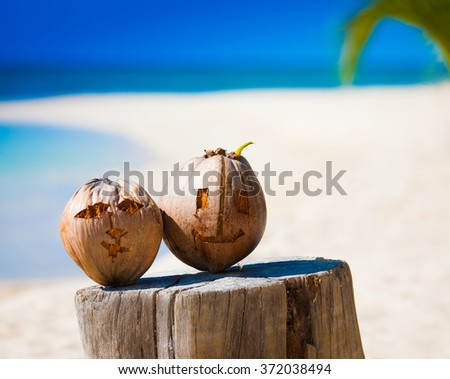 Beautiful amazing nature background. Tropical blue sun sea in Philippines . Luxury holiday resort. Island atoll about coral reef. Fresh freedom. Adventure day. Snorkeling. Coconut paradise.  - stock photo