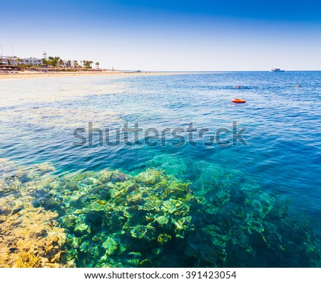 Beautiful amazing nature background. Tropical blue sun sea. Luxury holiday resort. Island about coral reef. Fresh  freedom. Adventure day. Snorkeling. Coconut paradise.