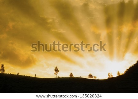 Beautiful and bright rays of light at sunrise with copy space - stock photo