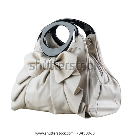 Beautiful and nice design of the lady accessory handbag isolated on white - stock photo