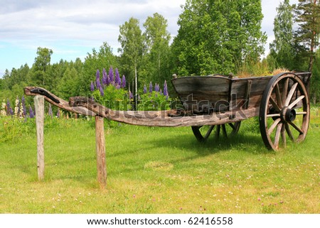 Beautiful antique wagon on the country side. Nice summer scenery with lupins and other flowers.