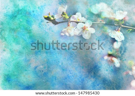 beautiful artwork with blooming apricot tree flowers and splashes of watercolor - stock photo