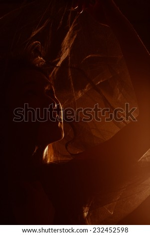 Beautiful Asian woman posing on dark background. Silhouette of female face with some detail still visible - stock photo