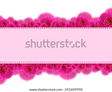 Beautiful aster flowers and card with space for your text isolated on white