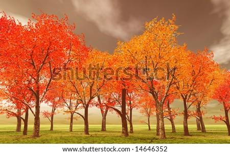Beautiful autumn - stock photo