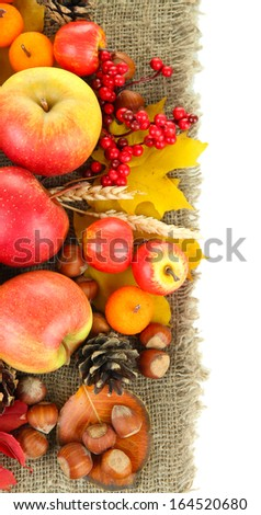 Beautiful autumn composition, isolated on white