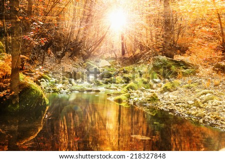 beautiful autumn fall calm tranquil stream - stock photo
