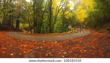 Beautiful autumn foliage around Old La Honda road in Palo Alto, California in the Santa Cruz Mountains - stock photo