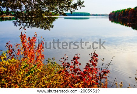 Beautiful autumn forest and reflection - stock photo