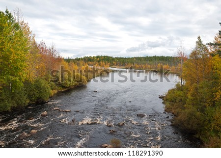 Beautiful autumn forest at the rivers coast. Karelia.