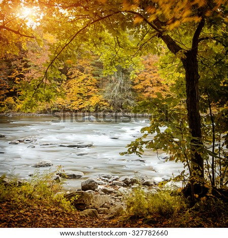Beautiful autumn forest with long exposure flowing river - stock photo