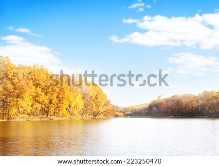 Beautiful autumn forest with water and wood planks.  - stock photo