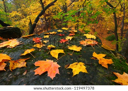 Beautiful autumn landscape at Rock Cut State Park in northern Illinois - stock photo