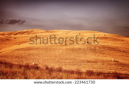 Beautiful autumn landscape, golden dry wheat field with haystack on it, rural agricultural panorama, harvest season concept  - stock photo