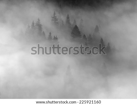 Beautiful autumn landscape in mountains Karpaty in the fores - stock photo