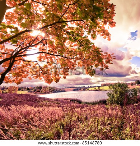 Beautiful autumn landscape in pink color - stock photo