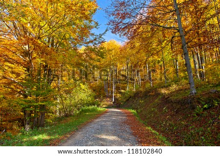 beautiful autumn landscape in the mountains - stock photo