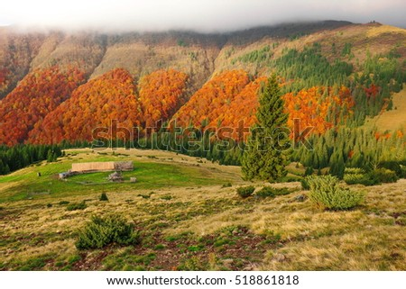 Beautiful autumn landscape in the mountains.