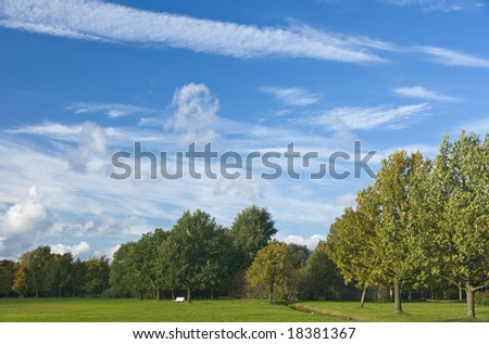Beautiful autumn landscape park area and blue sky