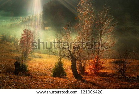 Beautiful autumn morning with sun rays coming over the forest - stock photo