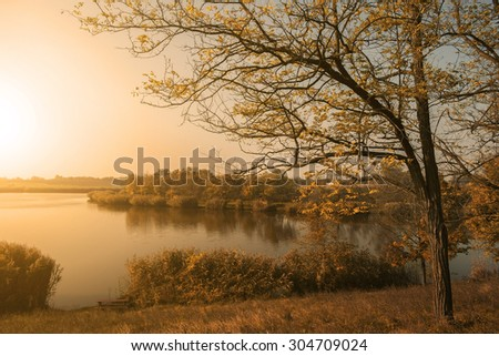 Beautiful autumn nature scene in sunset