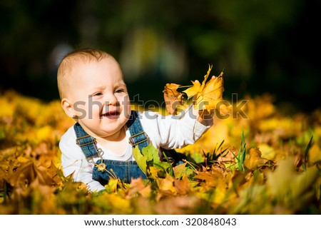 Beautiful baby crawling  in fallen leaves - autumn scene