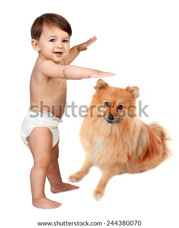 Beautiful baby in diaper with a brown dog isolated on a white background - stock photo