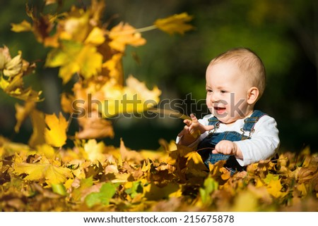 Beautiful baby sitting and playing  in fallen leaves - autumn scene