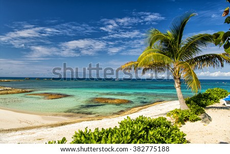 Beautiful bahamian beach with tropical plants of green palm trees blue clean atlantic ocean water and sandy coast in sunny summer weather in Great Stirrup Cay, Bahamas - stock photo