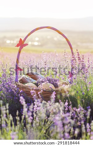 Beautiful basket with purple ribbon and butterfly and sweet-stuff in meadow of lavender flowers - stock photo