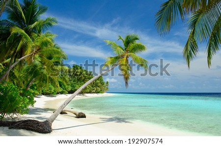 beautiful beach - stock photo