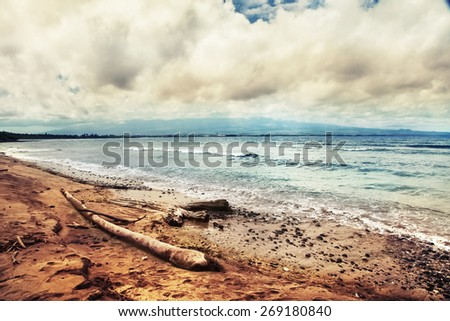 beautiful beach and tropical sea, Pacific Ocean water with waves, tree logsbrought by the ocean. Sea shore with sand on Maui Hawaii. Sunshine background. - stock photo